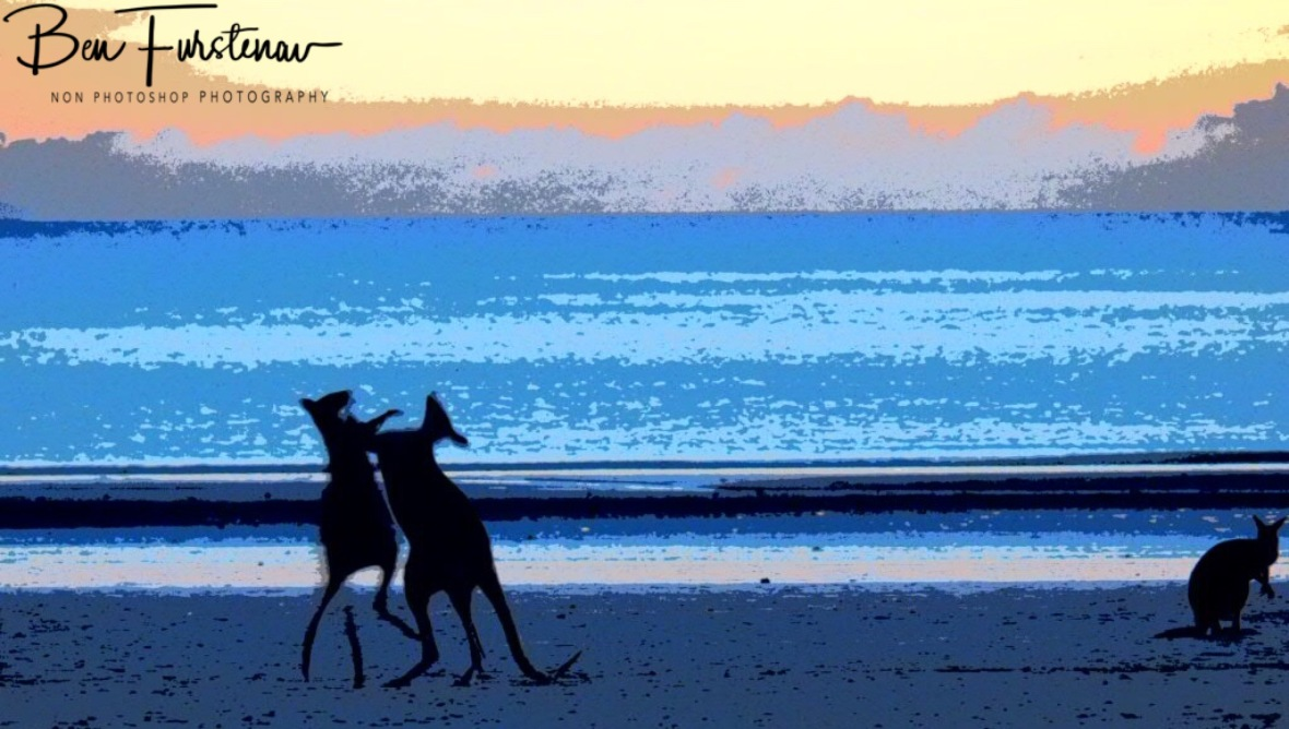 Early morning exercise at Cape Hillsborough, Queensland, Australia