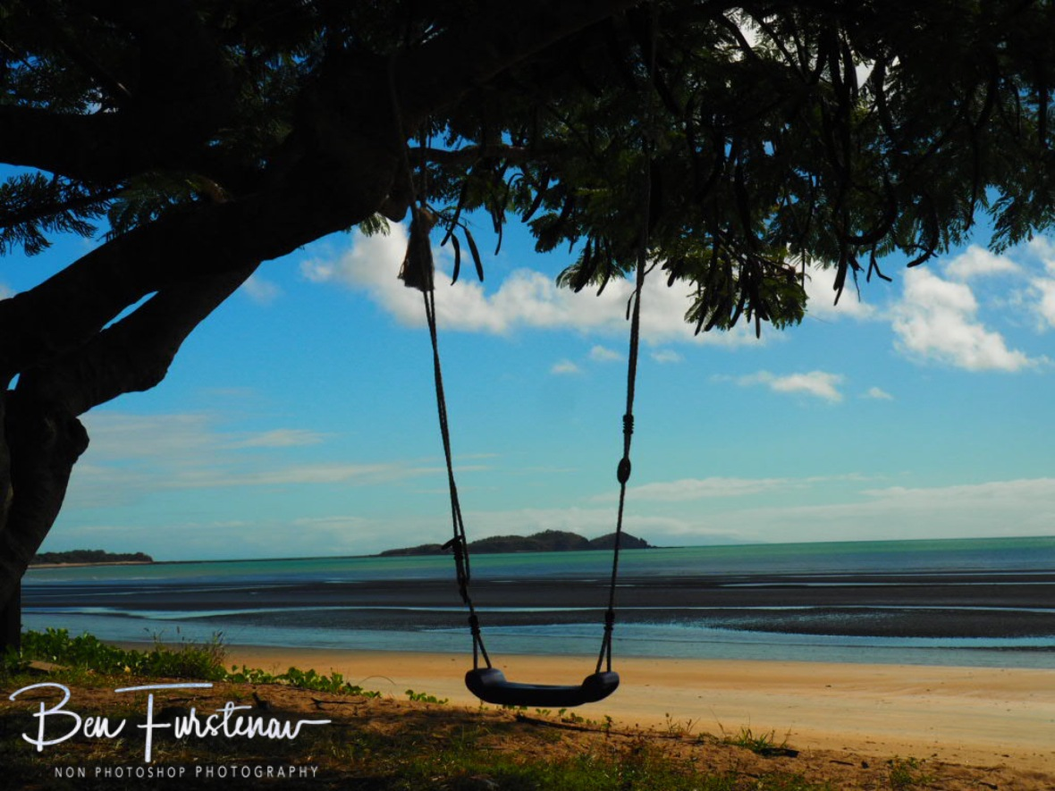 Perfect location for a swing at Seaforth, Queensland, Australia