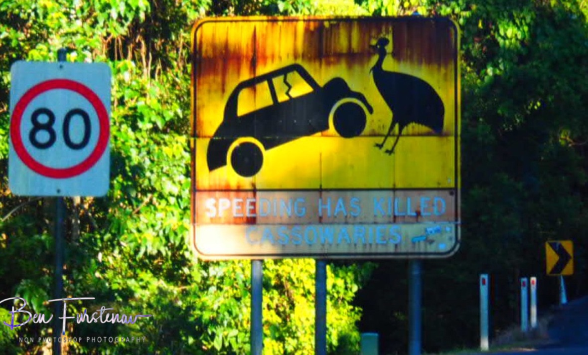 Road rules at Mission Beach, Tropical Queensland, Australia