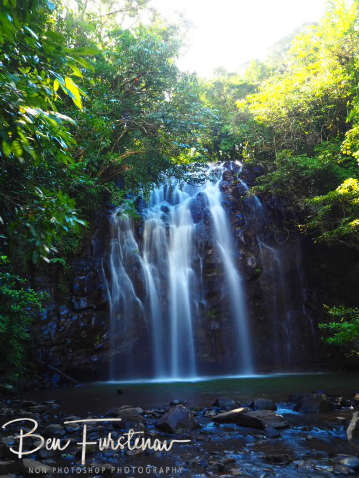 Ellinjia Falls and lush vegetation, Atherton Tablelands, Far North Queensland, Australia