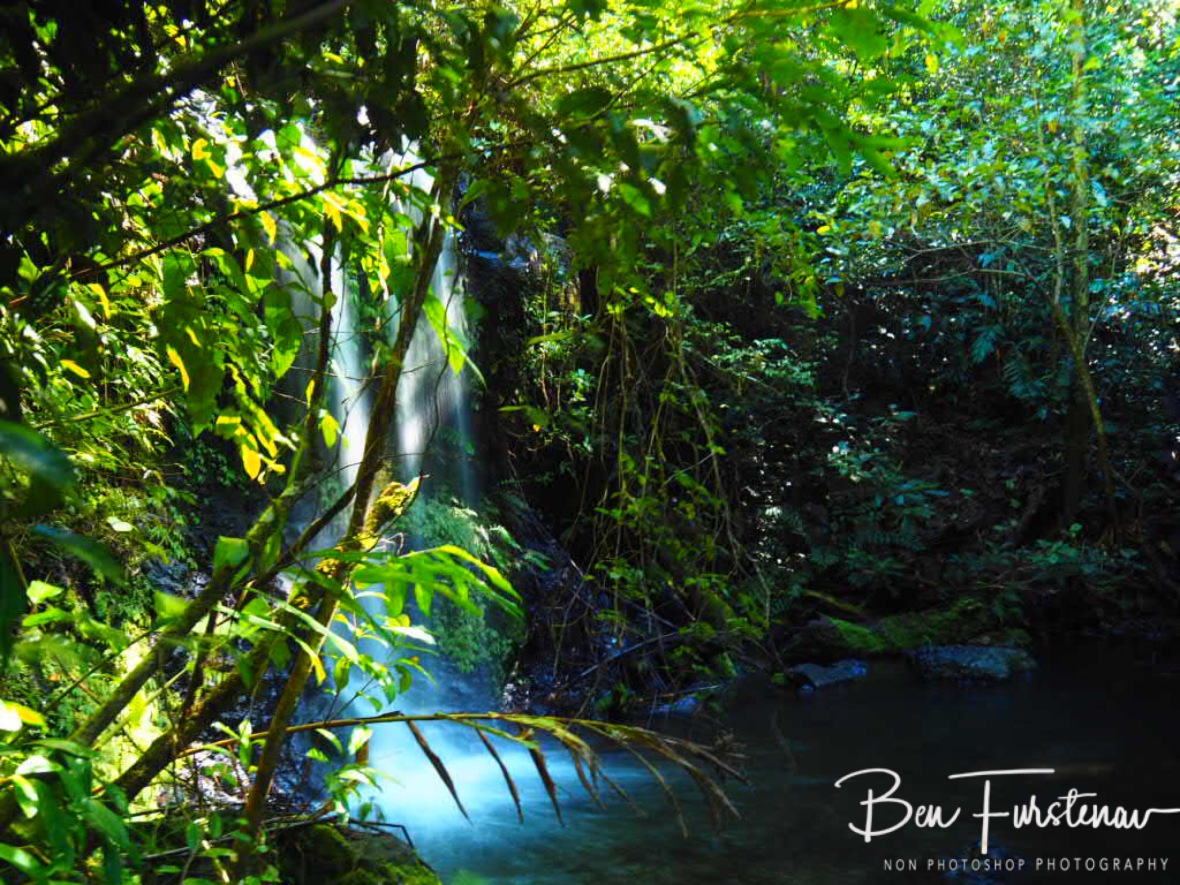 Overgrown waterfall at Atherton Tablelands, Far North Queensland, Australia