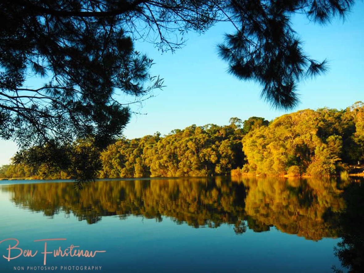 Wind sheltered mirror Lake Paluma, Northern Queensland, Australia