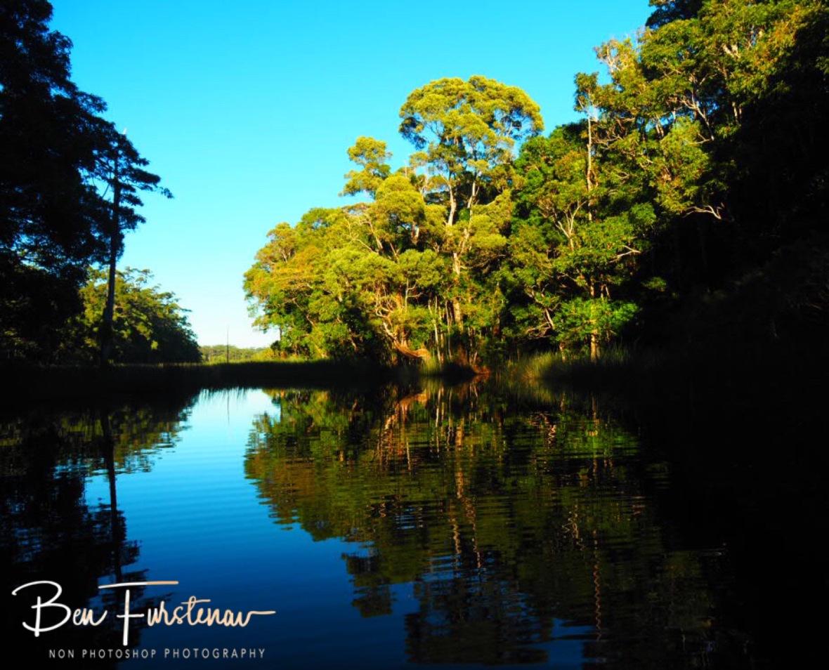 Early morning mirror and shadows at Lake Paluma, Northern Queensland, Australia