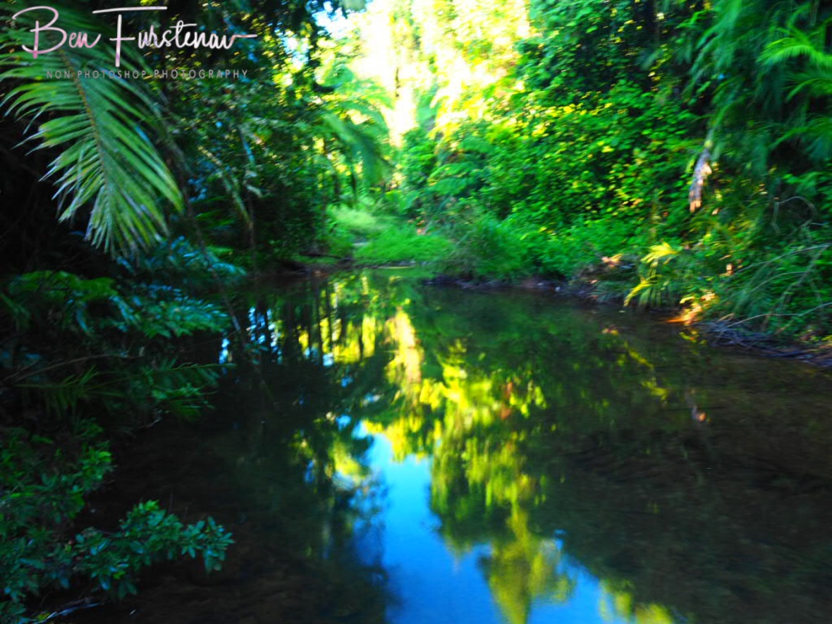 Tropical reflections at Mission Beach, Tropical Queensland, Australia