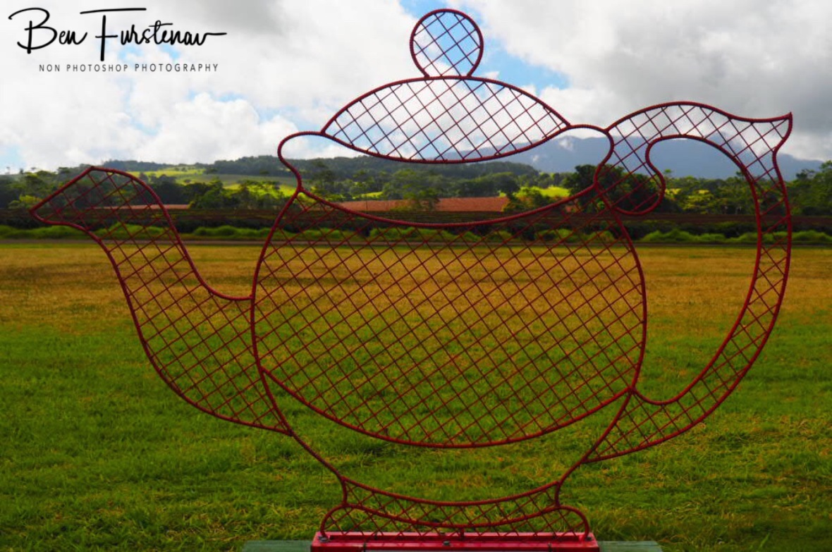 Giant tea pot at Atherton Tablelands, Far North Queensland, Australia