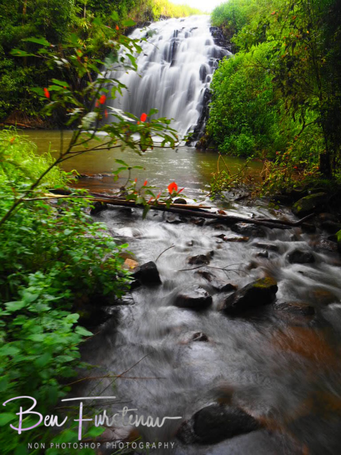 Leaving Pepina Falls behind at Atherton Tablelands, Far North Queensland, Australia
