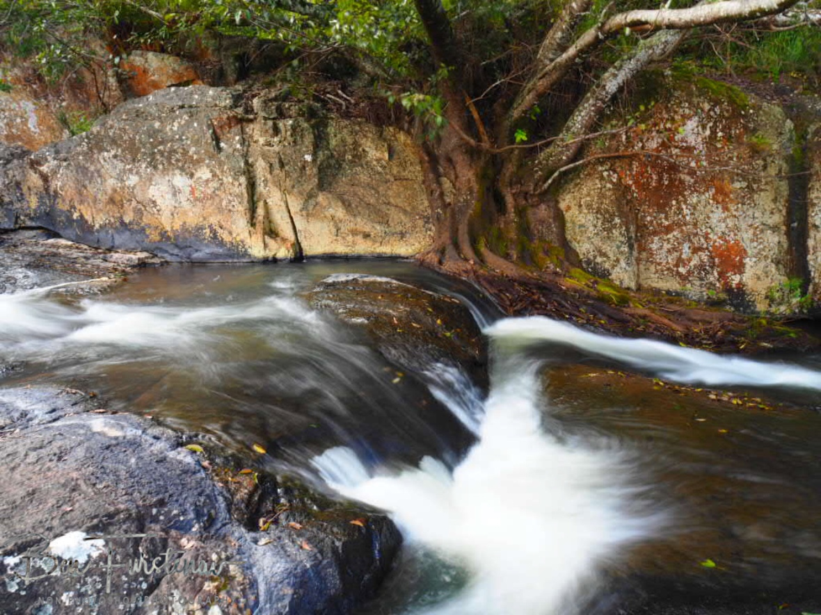 No room for error, Atherton Tablelands, Far North Queensland, Australia