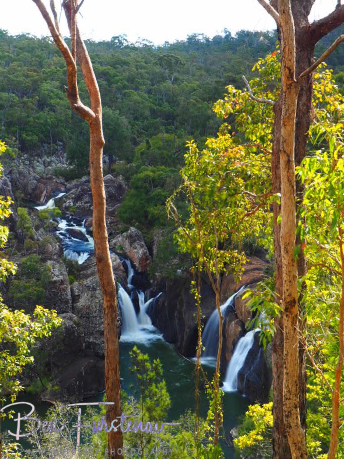 Eucalyptus Forest Overview, Atherton Tablelands, Far North Queensland, Australia