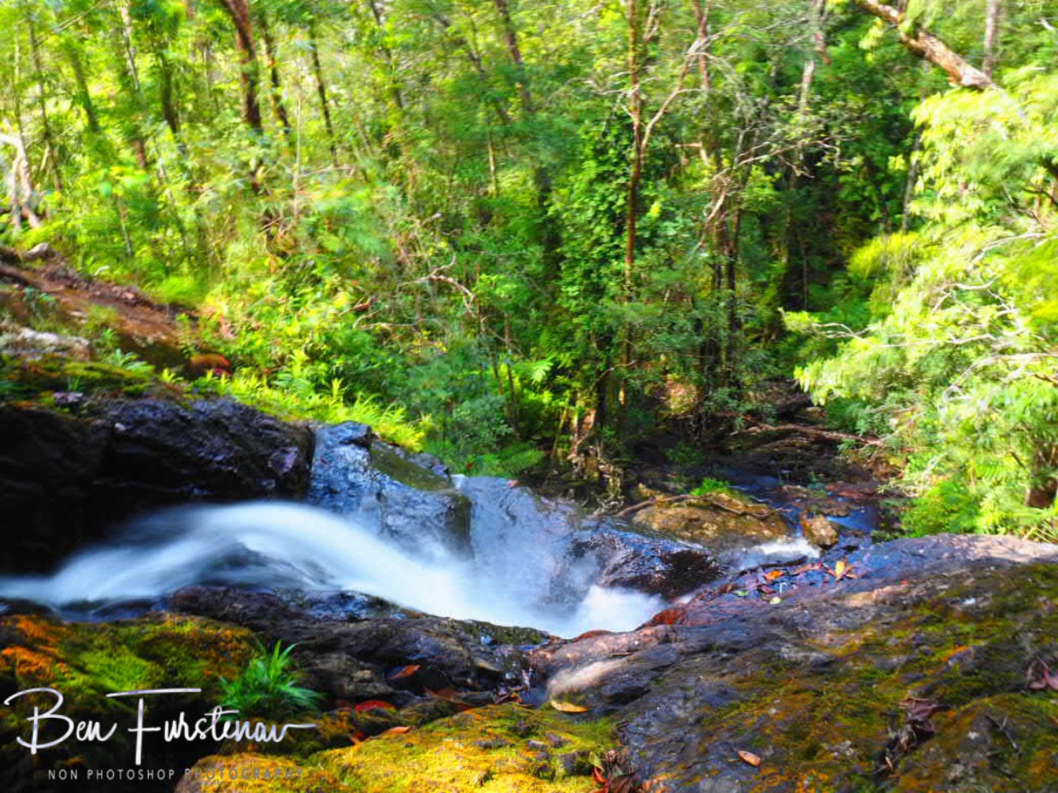 Creeks cascading the escarpment, Atherton Tablelands, Far North Queensland, Australia