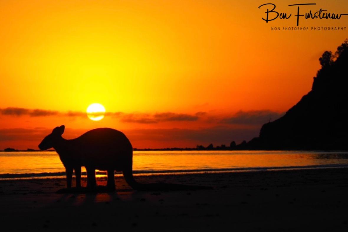 Holidays for some, Australia, Queensland, Cape Hillsborough,