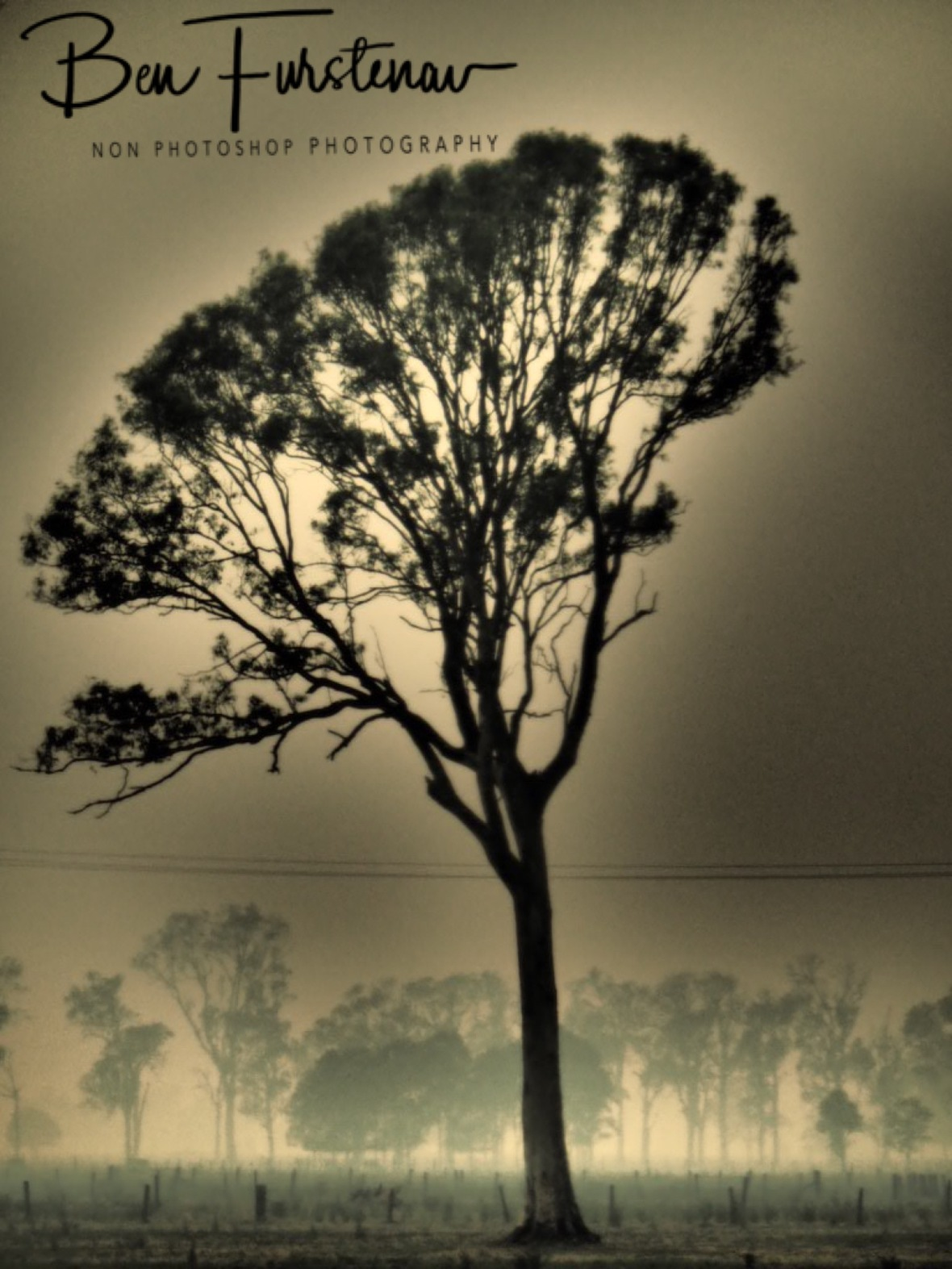 Surreal images in Australia, Northern New South Wales
