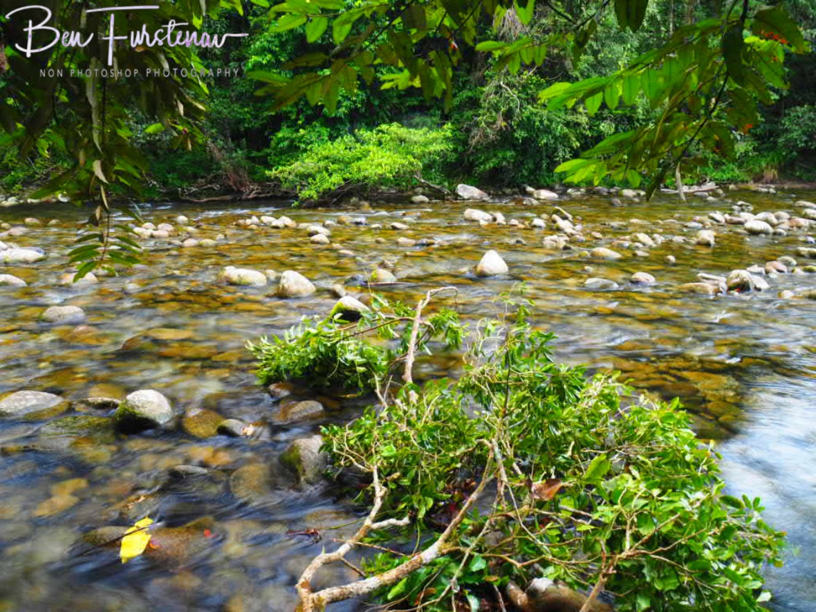 A healthy water system  at Babinda, Tropical Northern Queensland, Australia