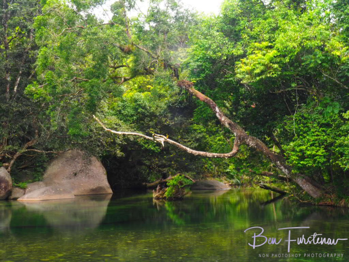 Perfect for a refreshing dip at Babinda, Tropical Northern Queensland, Australia