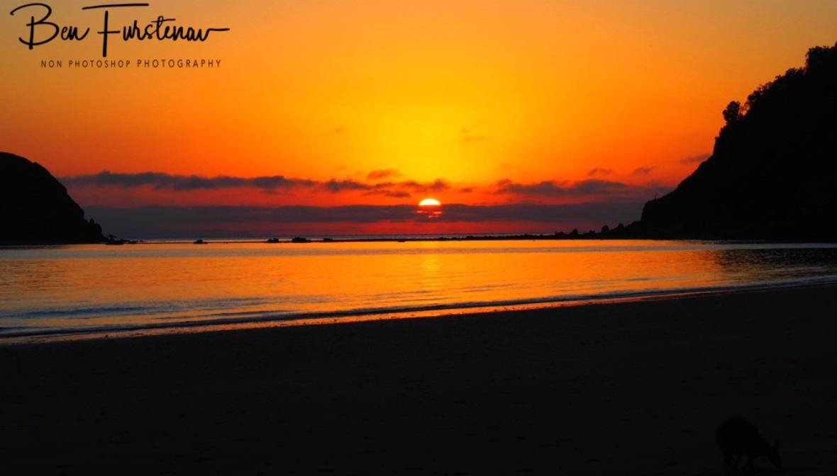 First light @ Cape Hillsborough, Tropical Northern Tropical, Australia