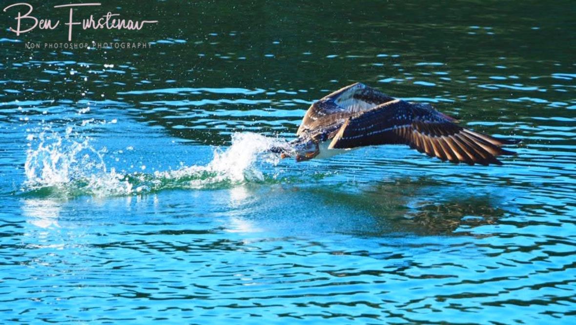 Take off @ Crowdy Head, Northern New South Wales, Australia