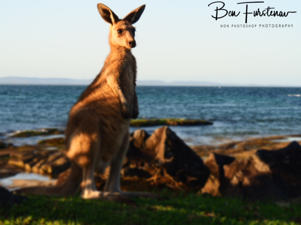Ocean paradise @ Woody Head, Northern New South Wales, Australia