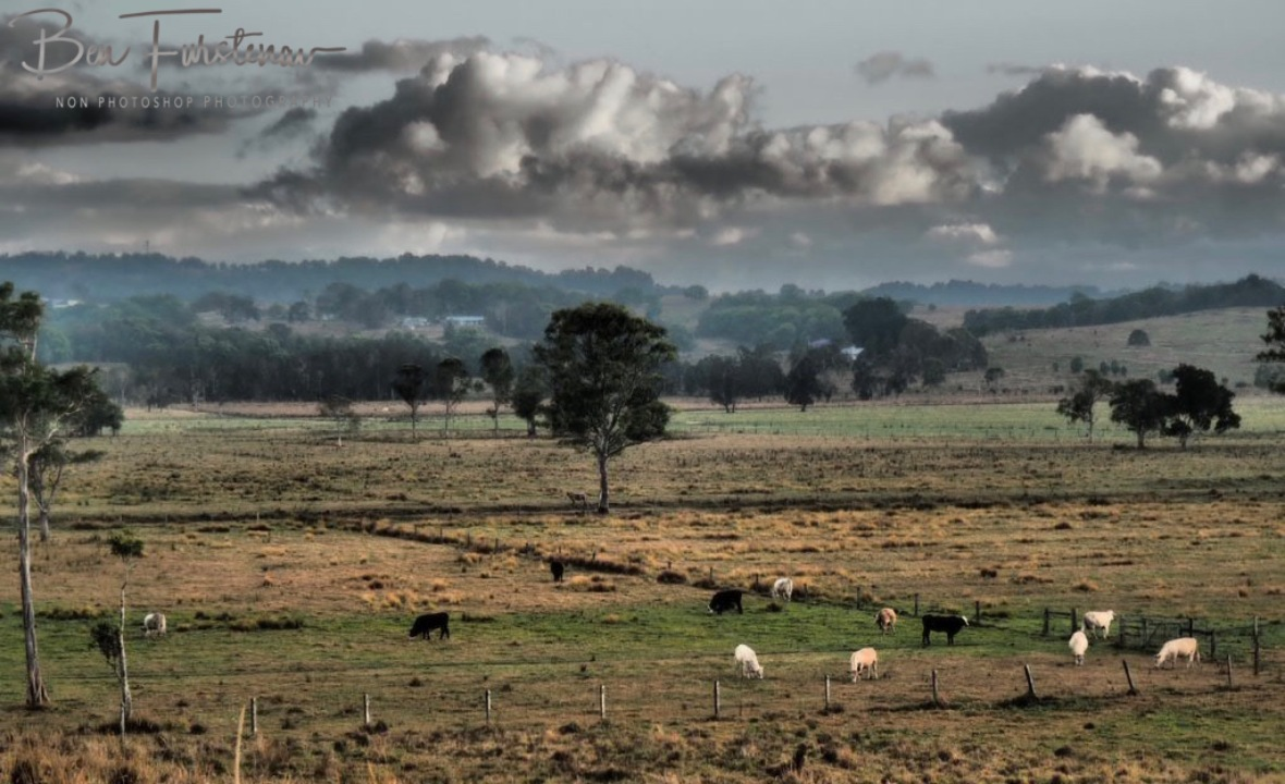 Farmland and National Parks @ Lismore area, Northern New South Wales, Australia