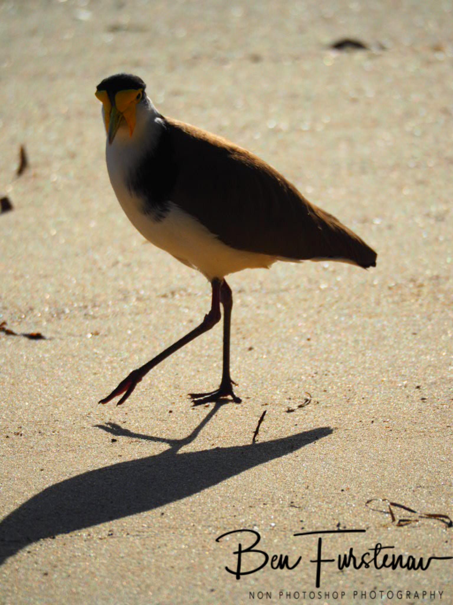 Strategy @ Deception Bay, South-East Queensland, Australia