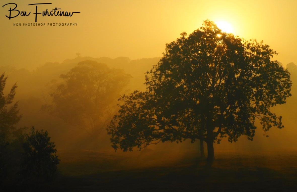 Sunrise finish @ Lismore area, Northern New South Wales, Australia