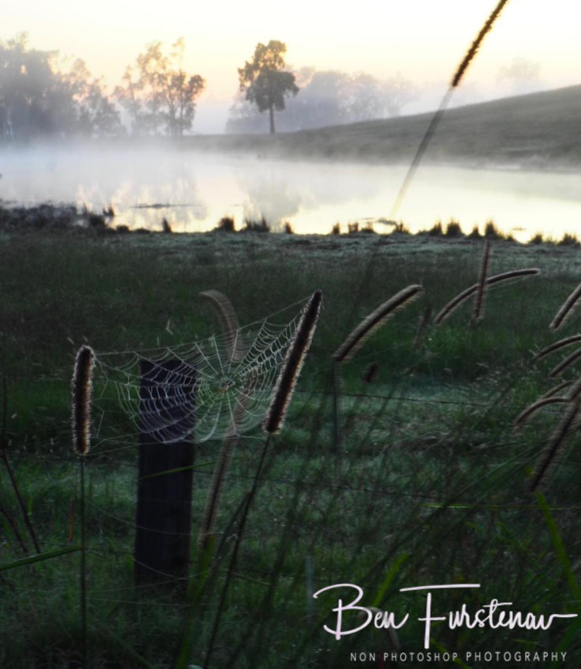 Magical sunrise @ Ulmarra, Northern New South Wales, Australia