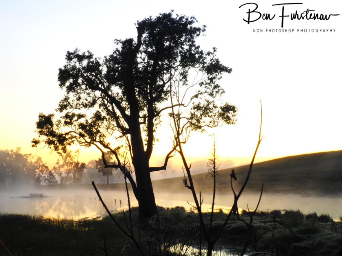 Steaming waters @ Ulmarra, Northern New South Wales, Australia