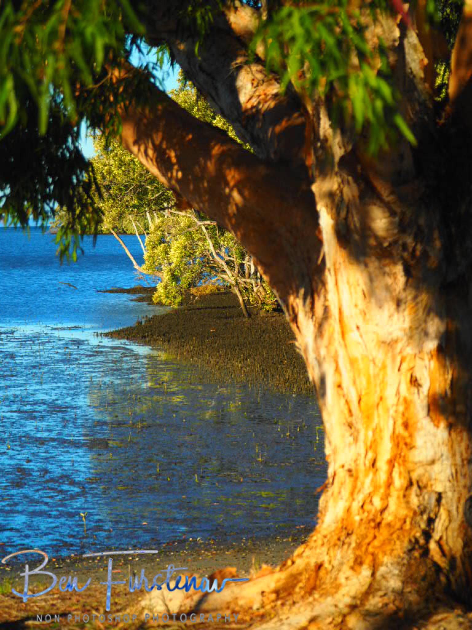 Tidal area @ Deception Bay, South-East Queensland, Australia