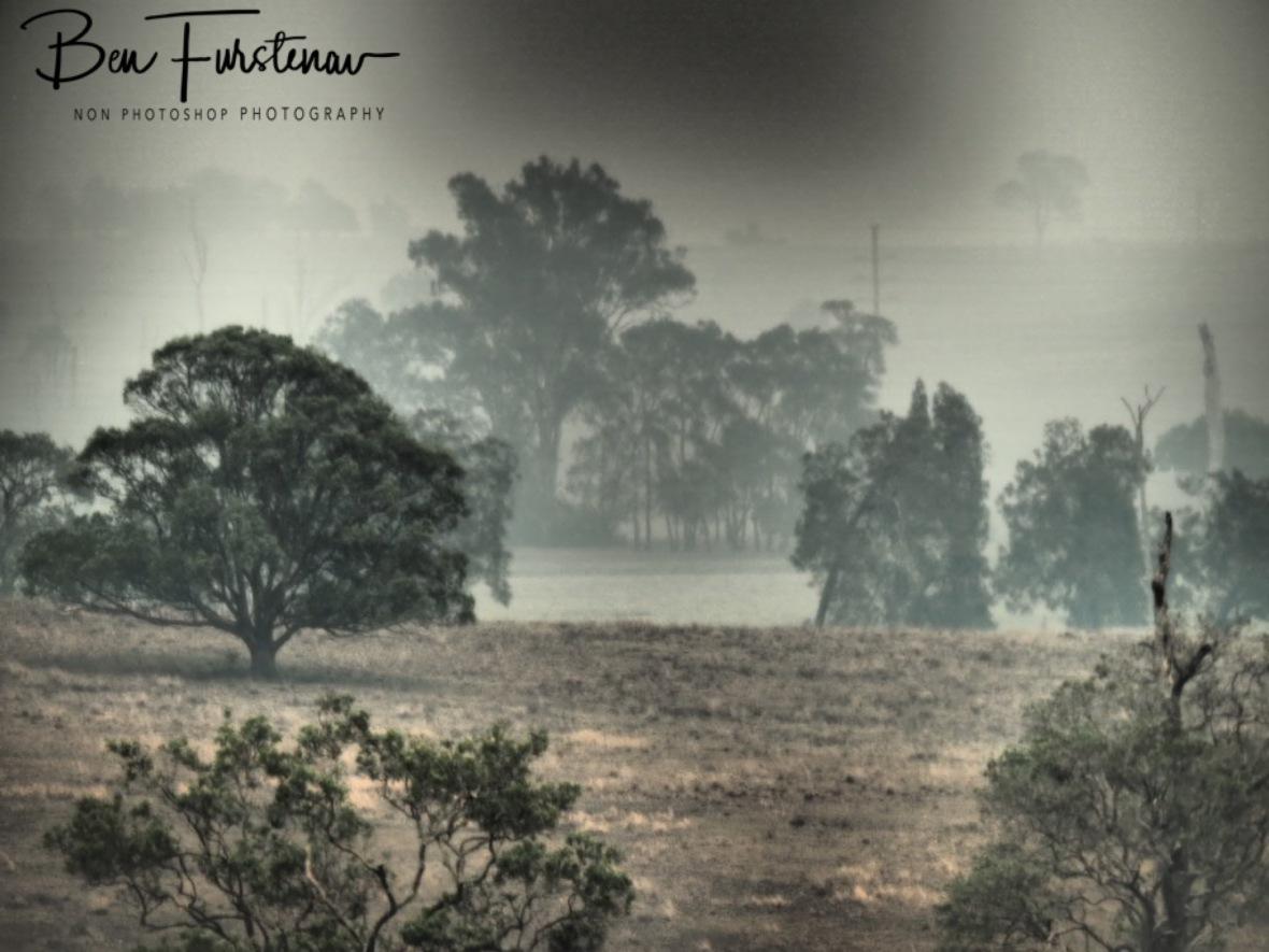Photographic similarities @ Ulmarra, Northern New South Wales, Australia